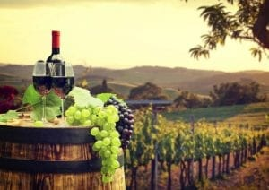 Top Wineries to Tour in Austin
