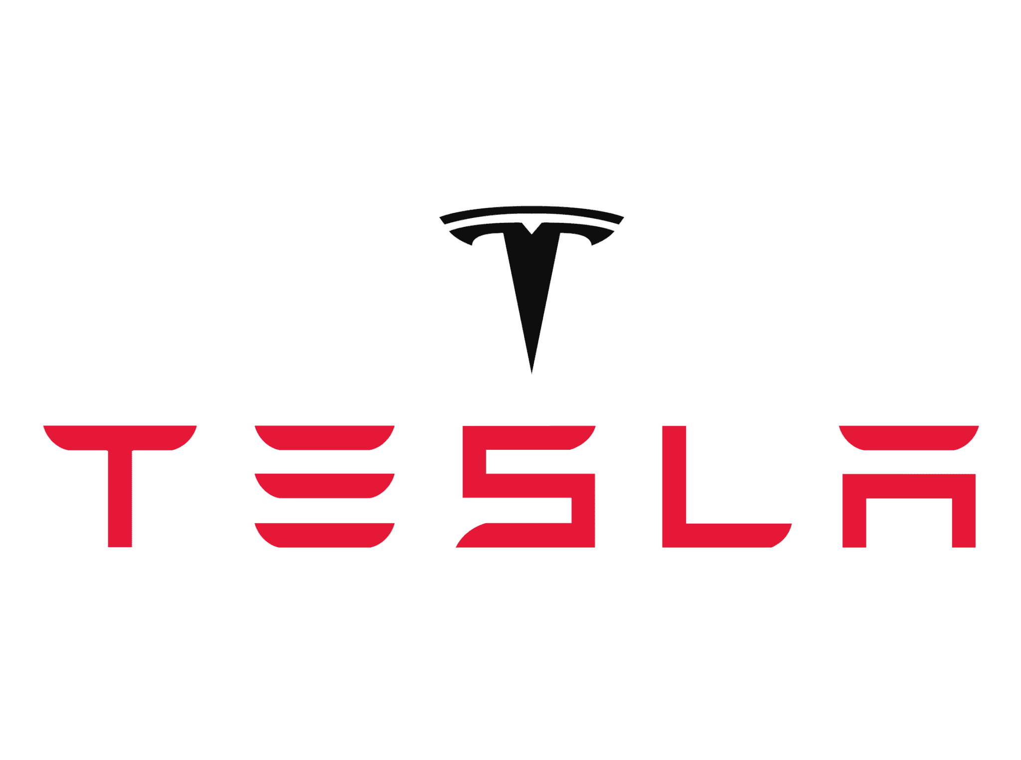tesla motors partner